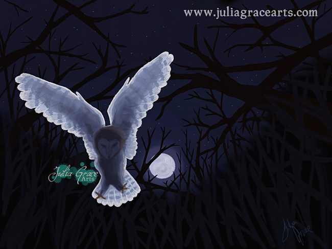 A digital painting of a Barn Owl by Moonlight using ArtRage