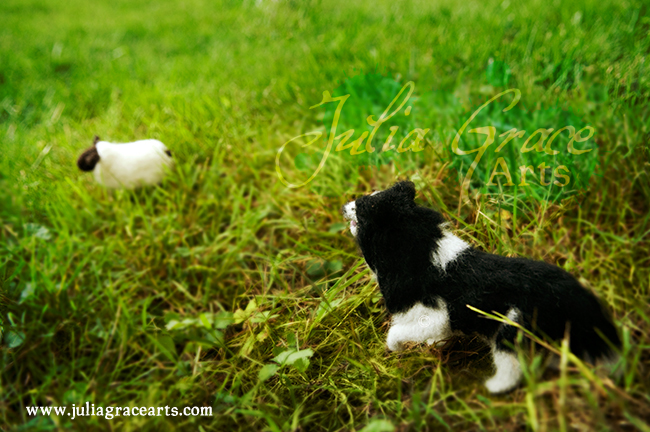 Needle felted border collie and sheep